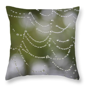 Throw Pillow featuring the photograph Drippy by Cathie Douglas