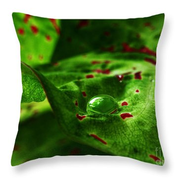 Throw Pillow featuring the photograph Droplet by Deborah Smith