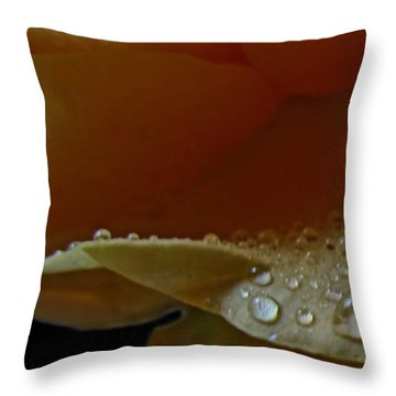 Throw Pillow featuring the photograph Drops Of Light by Debbie Portwood