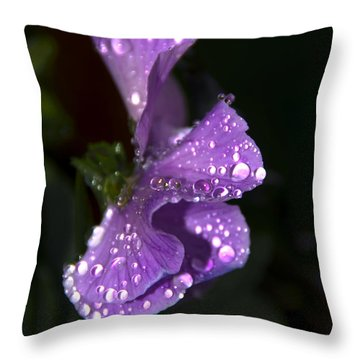 Drops Of Rain Throw Pillow by Svetlana Sewell