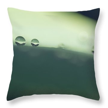 Throw Pillow featuring the photograph Drops by Priya Ghose