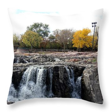 Drought River Falls Throw Pillow by Yumi Johnson