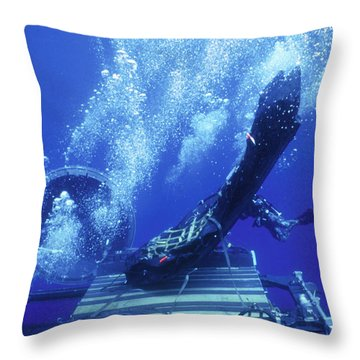 Dry Deck Shelter Rewmen Release Throw Pillow by Michael Wood