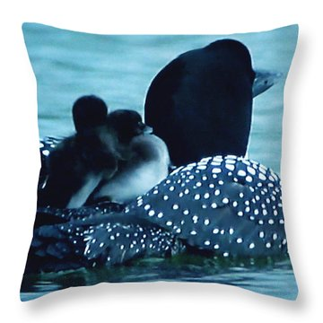 Duck Family Joy In The Lake  Throw Pillow by Colette V Hera  Guggenheim
