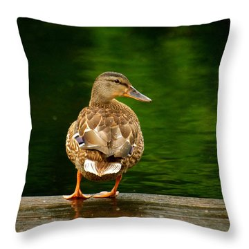 Duck On Dock Throw Pillow