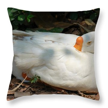 Throw Pillow featuring the photograph Duck Resting by Fotosas Photography