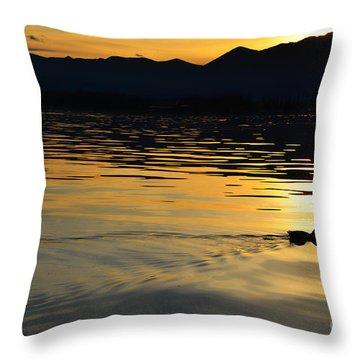 Duck Swimming Throw Pillow