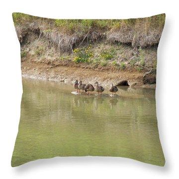 Ducks In A Row Throw Pillow by Corinne Elizabeth Cowherd