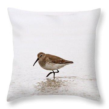 Calidris Alpina Throw Pillows