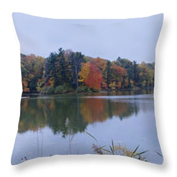 Throw Pillow featuring the photograph Durand Lake by William Norton