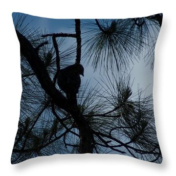 Throw Pillow featuring the photograph Dusk by Joseph Yarbrough