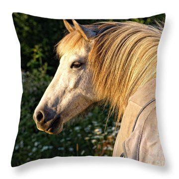 Dyfra Throw Pillow by Shari Nees