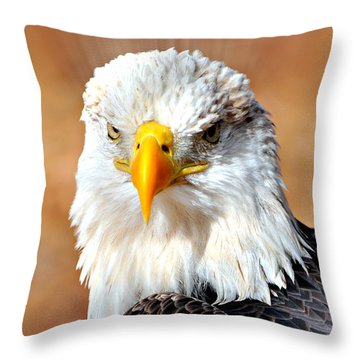 Eagle 21 Throw Pillow by Marty Koch