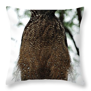Throw Pillow featuring the photograph Eagle At Bharatpur by Pravine Chester