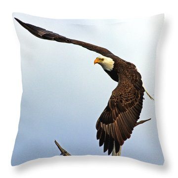 Eagle Flight-wing Power Throw Pillow by Larry Nieland