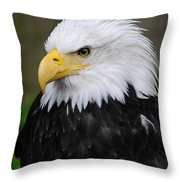 Eagle In Ketchikan Alaska 1371 Throw Pillow