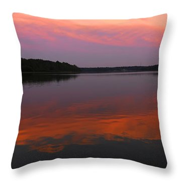 Throw Pillow featuring the photograph Eagle Overlooking Domain by Randall Branham