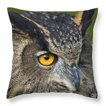 Eagle Owl 2 Throw Pillow by Clare Bambers
