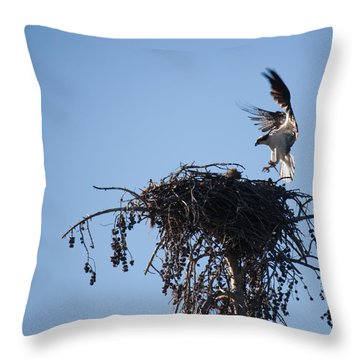 Eagle's Nest Throw Pillow by Ralf Kaiser
