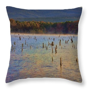 Early Morning Color Of Lake Wilhelmina-arkansas Throw Pillow by Douglas Barnard