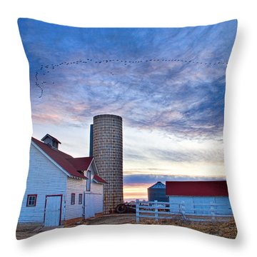 Early Morning On The Farm Throw Pillow by James BO  Insogna