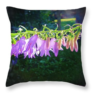 Early Morning Touch Throw Pillow
