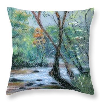 Early Spring Creek Bed Throw Pillow by Gretchen Allen