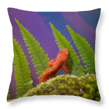 Eastern Newt 7 Throw Pillow by Douglas Barnett