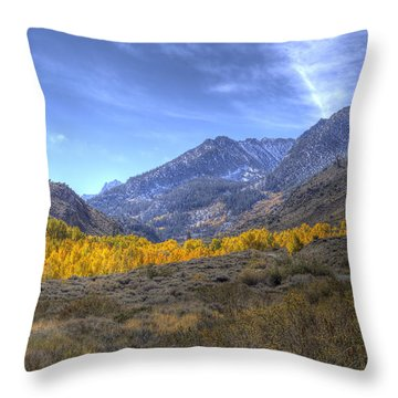 Throw Pillow featuring the photograph Eastern Sierras In Fall by Michele Cornelius
