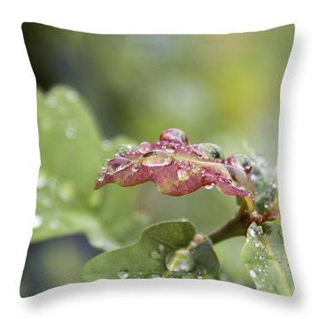 Eau De Vie - S01r03 Throw Pillow by Variance Collections