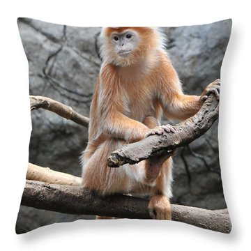 Ebony Langur Throw Pillow by Mike Martin