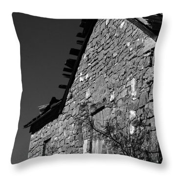 Throw Pillow featuring the photograph Echoes Of Another Time by Vicki Pelham