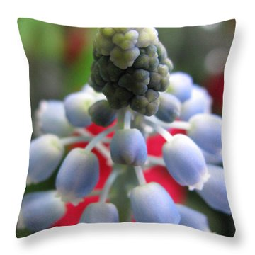Ecstatic Photography Throw Pillow by Tina Marie