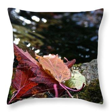 Edge Throw Pillow by Susan Herber