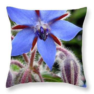 Edible Flower Photography Throw Pillow