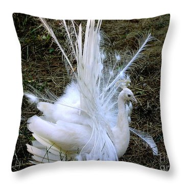 Throw Pillow featuring the photograph Effervescence by Rory Sagner