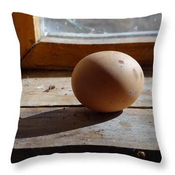 Egg On A Window Ledge Throw Pillow by Carol Berning