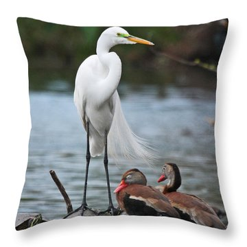 Throw Pillow featuring the photograph Egret - Best Friends by Luana K Perez