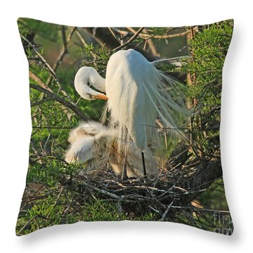 Throw Pillow featuring the photograph Egret - Mother And Baby Egrets by Luana K Perez