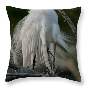 Throw Pillow featuring the photograph Egret - Mother And Eggs  by Luana K Perez