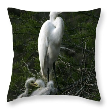Throw Pillow featuring the photograph Egret - Proud Mother by Luana K Perez