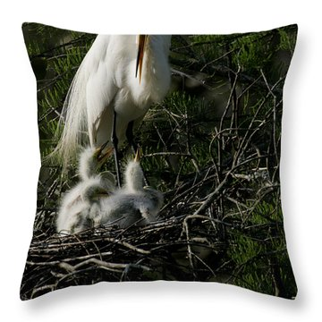 Throw Pillow featuring the photograph Egret Bird - Mother Egret And Babies by Luana K Perez