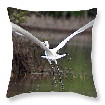 Egret In Flight Throw Pillow by Joe Faherty
