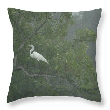 Egret In The Monsoons Throw Pillow by Bob Christopher