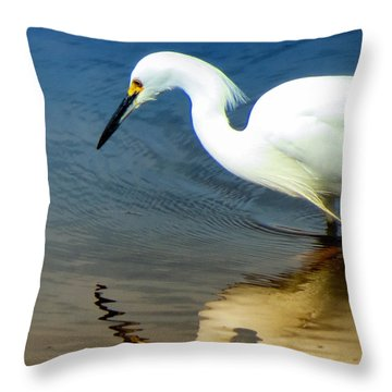 Egret Reflected Throw Pillow by Diane Wood