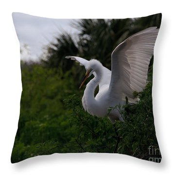 Throw Pillow featuring the photograph Egret Wings by Art Whitton