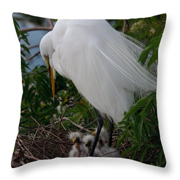 Throw Pillow featuring the photograph Egret With Chicks by Art Whitton