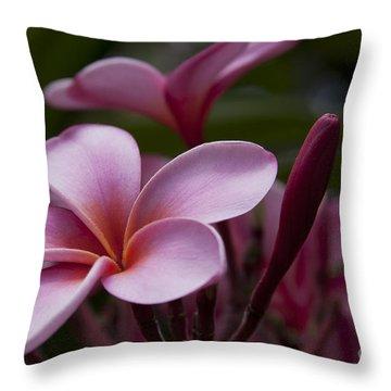 Eia Ku'u Lei Aloha Kula - Pua Melia - Pink Tropical Plumeria Maui Hawaii Throw Pillow by Sharon Mau