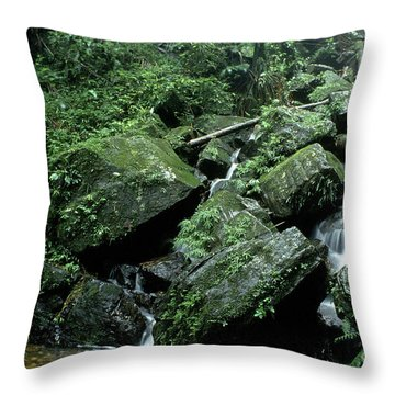El Yunque National Forest Rocks And Waterfall Throw Pillow by Thomas R Fletcher