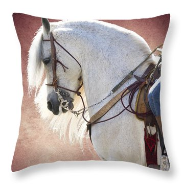 Elegance Throw Pillow by Jim And Emily Bush